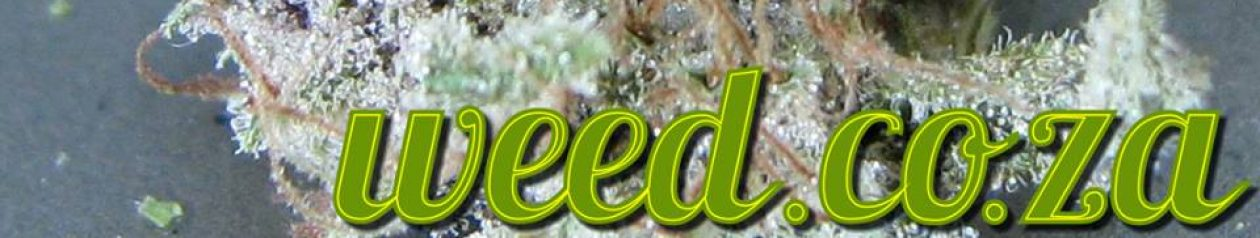 Weed.co.za – Cannabis World