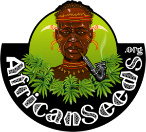 African Seed Bank