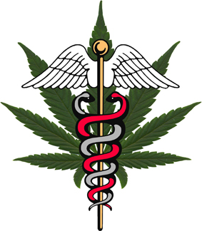 Medical Cannabis SA