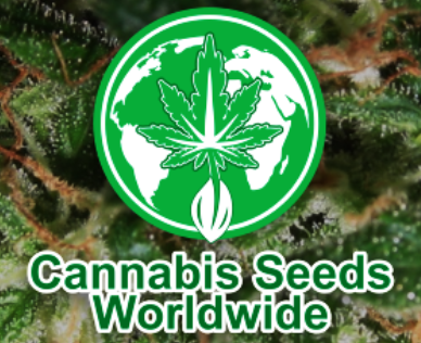 Cannabis Seeds Co