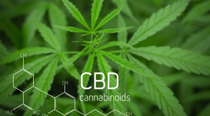 5 Awesome Things About CBD