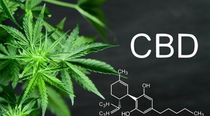 Where is CBD manufactured?