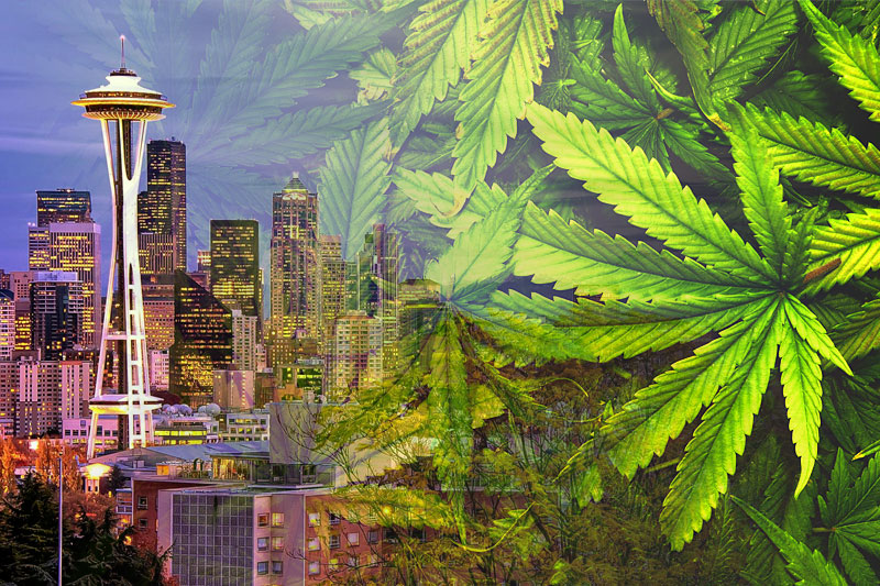 Seattle Cannabis Coffeeshops